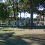 Istituto Massimo2